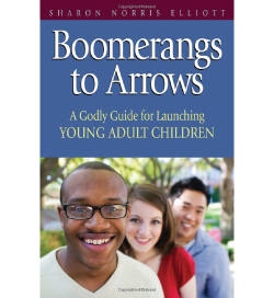 Boomerangs to Arrows by Sharon N. Elliott